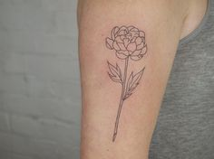 simple peony outline - tattoo people toronto - jess chen