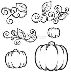 pumpkin drawing. pumpkin vine coloring pages sketch page drawing