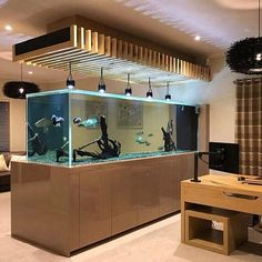 The aquarium is water-filled, small, filled with transparent materials such as glass or high-resistance plastic, Wall Aquarium, Aquarium Stand, Aquarium Design, Marine Aquarium, Aquarium Fish Tank, Aquarium Ideas, Fish Tank Wall, Fish Tank Stand, Cool Fish Tanks
