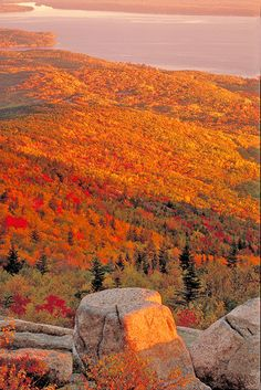 Drive an RV along the East Coast following the changing colors of the leaves beginning with Acadia National Park.