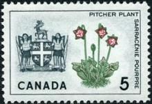 Canada Stamp -   (1966) Coat of Arms and Provincial flower - Newfoundland: Pitcher Plant