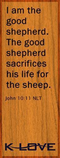 """ am the good shepherd. The good shepherd sacrifices his life for the sheep."" -John 10:11"