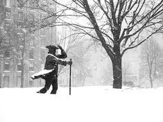 More snow by Quan Nguyen, via Flickr