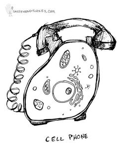 cell phone... punny