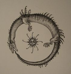 Google Image Result for http://www.deviantart.com/download/48678335/Ouroboros_by_Musta_Aurinko.jpg