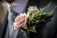 Wedding Photography, Rose, Flowers, Plants, Pink, Plant, Wedding Photos, Roses, Wedding Pictures