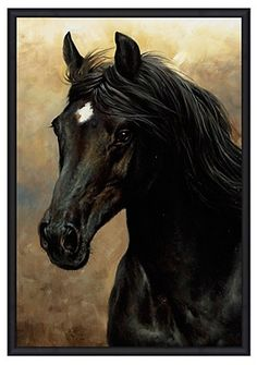 The regal majesty of this coal-black horse with a white star on its forehead makes this stunning wall art perfect for the equestrian in your life. The slender black floater frame echoes the sleekness and beauty of this work.