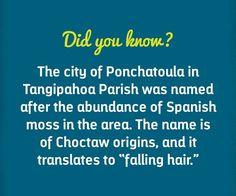 Ponchatoula, Louisiana.