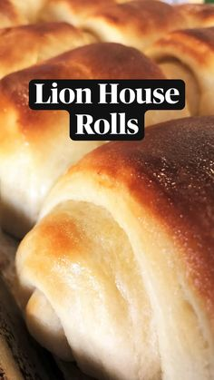 Donut Recipes, Brunch Recipes, Dinner Recipes, Cooking Recipes, Lion House Rolls, Yeast Bread Recipes, Bread Appetizers, Bread Bowls, Savoury Dishes