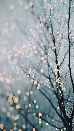 wallpaper tumblr | wallpaper christmas iphone 5 | Tumblr