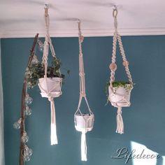 Plant Hanger, Macrame, Plants, Home Decor, Flora, Interior Design, Home Interior Design, Plant, Home Decoration