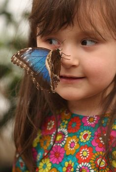 A butterfly lands on a girl in the Sensational Butterflies exhibition at the Natural History Museum (Getty Images)