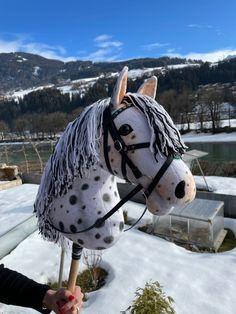 Hobby Horse, Chelsea, Animals, Hobbies, Sustainability, Animales, Animaux, Animal, Animais