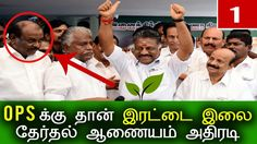 இரட்டை இலையை கைப்பற்றினார் பன்னீர்செல்வம்  |Latest Tamil Political Politics Cinema Recent News TodayLatest Tamil Political Politics Cinema Recent News Today. Panneerselvam Team will lead Aiadmk Party. Tamil Peoples crowd are eagerly waiting for that ... Check more at http://tamil.swengen.com/%e0%ae%87%e0%ae%b0%e0%ae%9f%e0%af%8d%e0%ae%9f%e0%af%88-%e0%ae%87%e0%ae%b2%e0%af%88%e0%ae%af%e0%af%88-%e0%ae%95%e0%af%88%e0%ae%aa%e0%af%8d%e0%ae%aa%e0%ae%b1%e0%af%8d%e0%ae%b1%e0%ae%bf%e0%ae%a9%e0%ae%be/