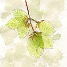 Rie Designed Sketch A Day, Doodle Sketch, Plant Leaves, Doodles, Sketches, Illustration, Creative, Artist, Plants