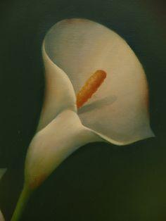 Calla Lily acrylics by artist Sue Pruett