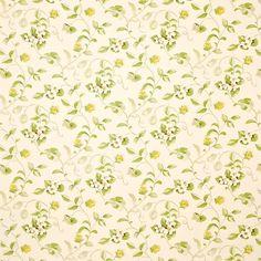 Orchard Blossom (DAPGOR202) | A Painters Garden