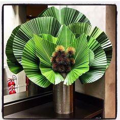 """58 Gostos, 3 Comentários - Marly Tedesco Netto (@marlytedesco) no Instagram: """"Vamos agradecer mais um novo dia!!! ☘☘ @buke.floral"""""""
