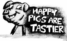 Happy Pigs are Tastier!