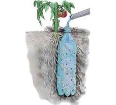 Système d'irrigation bon marché