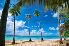 Luquillo Beach in Puerto Rico a favorite beach of all my family and especially my mom. Played and swam here many times.