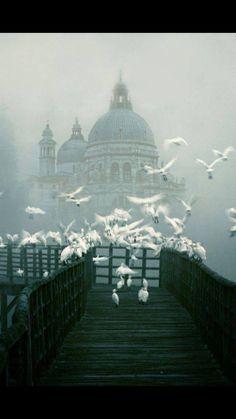 Basilica Della Salute, Venice