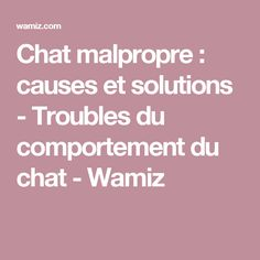 Chat malpropre : causes et solutions - Troubles du comportement du chat - Wamiz