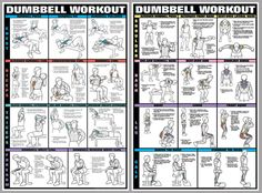 Arm Workout Instructional Wall Charts 2 Poster Combo Triceps Biceps