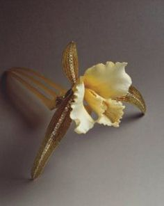 Cattleya_Orchid_Hair_Ornament LaLique 1903-1904