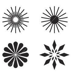 radial design in nature - Google Search | Radial design ...