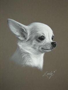 """Custom Pet Portrait 11"""" X 14"""" -  Fine Art B/W Soft Pastel Drawing - Handmade by Daniel Lovely  by HallowedEarth #zibbet"""