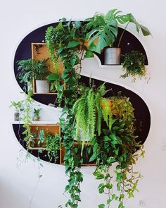 upcycled lightletter with plants Outdoor Plants, Outdoor Gardens, Decoration Crafts, Interior Decorating, Interior Design, Dream Rooms, Home Look, Flower Power, Diy Furniture