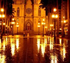 Vista noturna da Catedral da Sé - SP