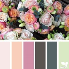 today's inspiration image for { color flora } is by @fairynuffflowers ... thank you, Steph, for another gorgeous #SeedsColor image share!