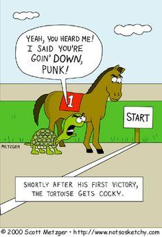 Tortoise race.