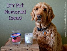 The passing of a beloved pet is a hard time for any owner of any age. Here are two DIY project you can do either in honor of your pet or make as a gift as a tribute to your four legged friend.. Click on the picture to learn more!