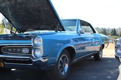 1967 GTO Classic Bikes, Classic Cars, 1967 Gto, Gto Car, Pontiac Gto, Hot Rods, Motorcycles, Nice, Shop