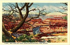 Vintage Arizona postcard west from Hopi Point in Grand Canyon National Park, showing Granite Gorge and the Colorado River.