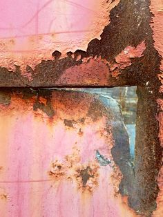 Rusting Daybreak | Ann Kate Davidson