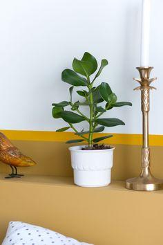 Wit bloempotje - Enter My Attic Daft Punk, Attic, My House, Planter Pots, Yellow, Decoration, Interior, Shop, Vintage