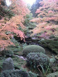 Japanese Garden in Tatton Park, Cheshire