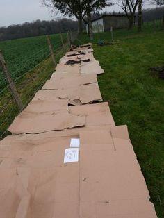 Carton pour les bases du jardin en lasagne