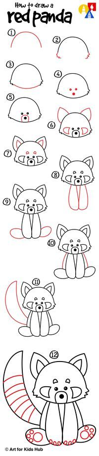 How To Draw A Red Panda - Art for Kids Hub