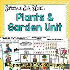 Improve reading, math and language skills while learning about plants and garden! This set is packed full of visuals and hands on learning tasks. It's perfect for special education classrooms, students with autism and early elementary classrooms.