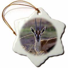 3dRose Thomsons Gazelle wildlife, Maasai Mara Reserve, Kenya - AF21 KSU0070 - Keren Su, Snowflake Ornament, Porcelain, 3-inch