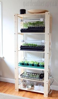 Genius. Why did I never think of vertical? it sure would be nice to get my kitchen table back!  Grow Light Shelving for Seed Starting Indoors Ladder Bookcase, Bathroom Medicine Cabinet, Bugs, Indoor Garden, Organic Gardening, Shelves, Home Decor, Shelving, Homemade Home Decor