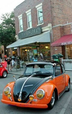 Black over Orange Bug..Re-pin brought to you by agents of #carinsurance at #houseofinsurance in Eugene, Oregon