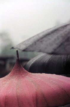 Saul Leiter Untitled (Pink umbrella close up) 1958 Chromogenic Print Saul Leiter, Diane Arbus, Pink Umbrella, Under My Umbrella, I Love Rain, No Rain, Walking In The Rain, Singing In The Rain, Tim Walker