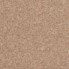 Beige Venus Twist Carpet  Bedroom carpet  £7.99/m