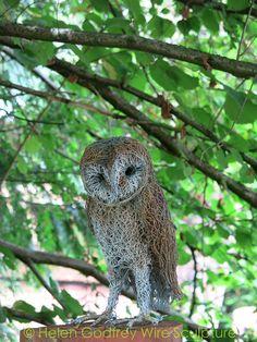 Helen Godfrey - Wire Owl I NEED this in my yard!